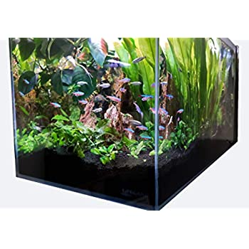 Image of Lifegard Aquatics Lifegard Ultra Low Iron Glass Crystal Aquarium with Built-in Side Filter 45° Beveled Edge 14.2 Gallons, Clear Pet Supplies