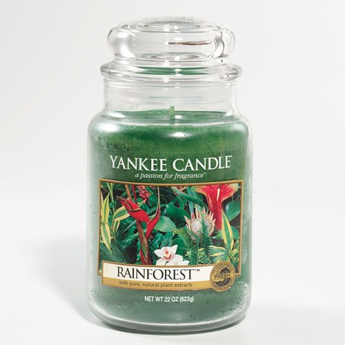 candle rain - 8