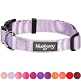Blueberry Pet 32 Colors Classic Dog Collar - Lavender - X-Small - Neck 7.5