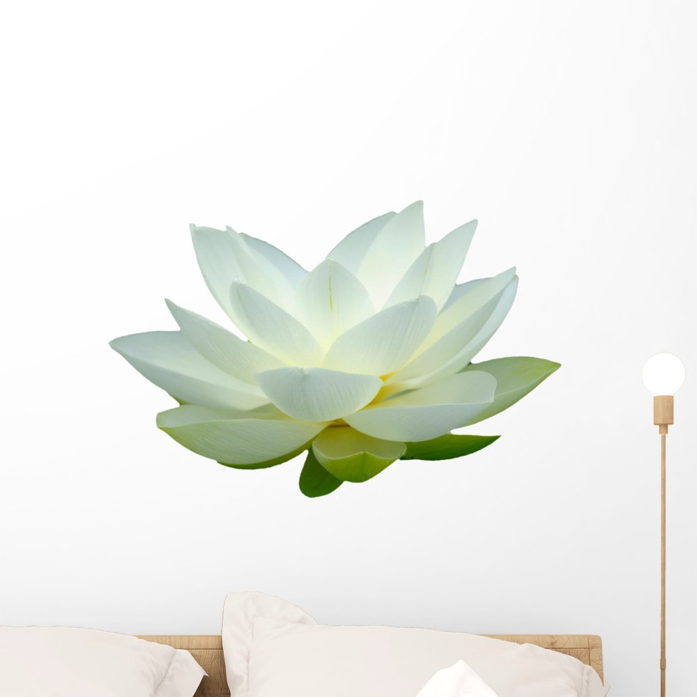 Amazon Wallmonkeys White Lotus Flower Wall Decal Peel Stick