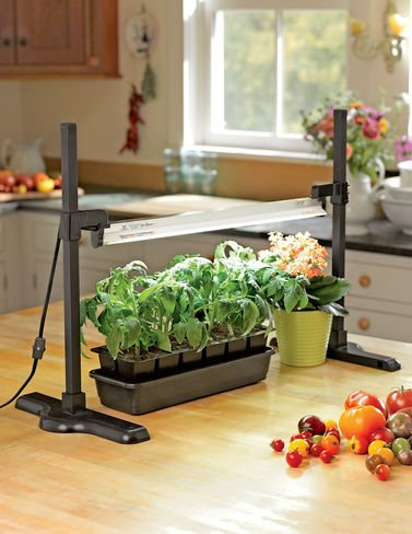 Tabletop T5 Fluorescent Grow Light Stand Light Included (Grow Lights Tabletop compare prices)