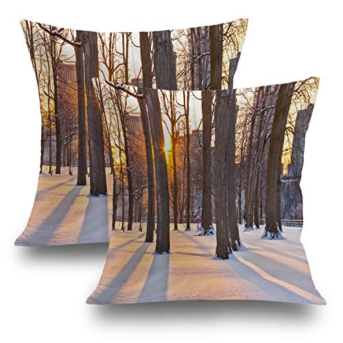 - Shrahala Christmas Pillow Covers, Decorative Pillowcases Fall Trees Autumn Niagara Falls State Park Cushion Case for Sofa Bedroom Car Throw Pillow Covers Cushion Square 18 x 18 Inches Brown, Set of 2