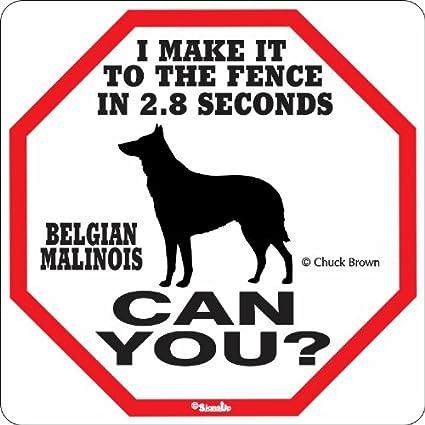 Belgian Malinois Rides 5 cents Metal Sign k-9 Police Dog