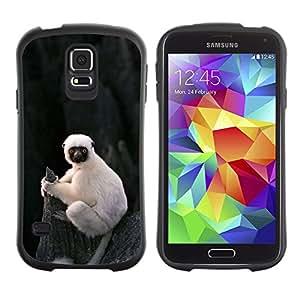 LASTONE PHONE CASE / Suave Silicona Caso Carcasa de Caucho Funda para Samsung Galaxy S5 SM-G900 / cute little monkey ape Madagascar