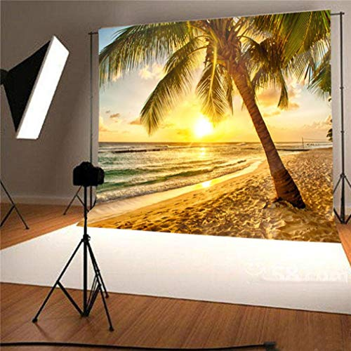vmree Indoor Photographic Studio Backdrop, 3D Sunny Beach Themed Photo Shooting Background Props Wall Hanging Screen Post-Production Curtain Folding & Washable Art Cloth 5x3FT. (D) -