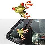 Pegatina vinilo rana para ventanillas coche retrovisores cascos motos ciclomotores bicicletas de OPEN BUY