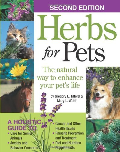 Herbs for Pets: The Natural Way to Enhance Your Pet