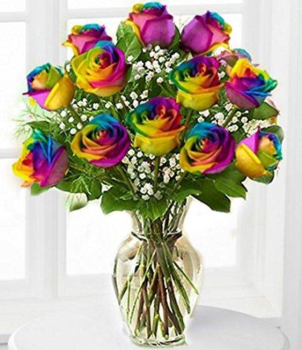 Dozen Rainbow Roses - Fresh Flowers Hand Delivered in Albuquerque Area (Babys Breath Florist)