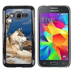 TopCaseStore / la caja del caucho duro de la cubierta de protección de la piel - Swedish Vallhund Elkhound Wolf Dog - Samsung Galaxy Core Prime SM-G360