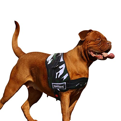 Heavy Duty Harness (Heavy Duty Dog Harness,No Pull Mastiff Dog Harness with Handle Pet Vest Padded Doberman Harness Easy Walk With D-ring for Leash LovinPet)