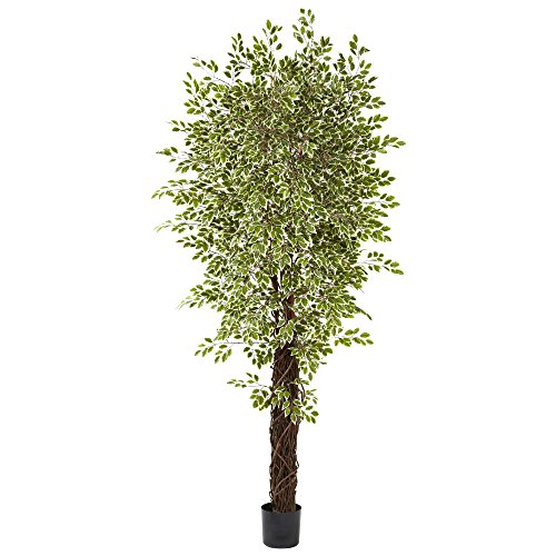 Nearly Natural 5431 Variegated Mini Ficus with 4131 Leave...