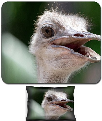 Luxlady Mouse Wrist Rest and Small Mousepad Set, 2pc Wrist Support design IMAGE: 34404078 Image of ostrich looks like it is smiling at - Like Ostriches