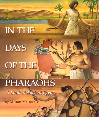 Download In the Days of the Pharaohs: A Look at Ancient Egypt (Single Title: Social Studies) pdf