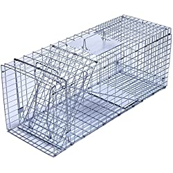 """Trapro Large Collapsible Humane Live Animal Cage Trap for Raccoon, Opossum, Stray Cat, Rabbit, Groundhog and Armadillo - 32"""" x 11"""" x 13"""""""