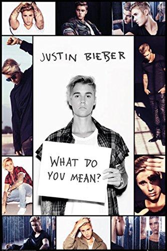 Grupo Erik Editores Justin Bieber Grid Bravado Poster: Amazon.es ...