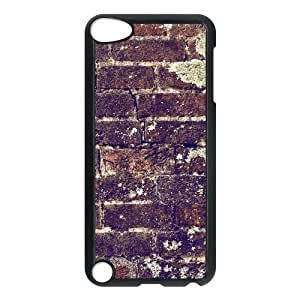Brick Wall Texture iPod Touch 5 Case Black DIY Gift xxy002_5041576