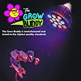 Indoor Growers Best Choice For 12w LED Grow Lights, The Authentic Grow Buddy Greenhouse Gardening Plant Growth Bulb Offers An Unconditional