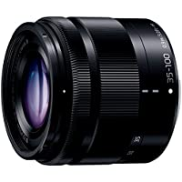 Panasonic LUMIX G VARIO 35-100mm / F4.0-5.6 ASPH. / MEGA O.I.S. H-FS35100 -K (Black) - International Version (No Warranty)