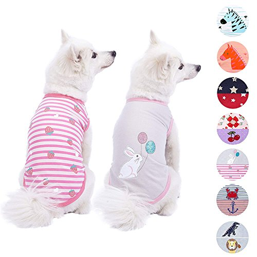 Blueberry Pet Pack of 2 Soft & Comfy Wonderland Striped Cotton Blend Dog T Shirts, Back Length 10'', Clothes for Dogs by Blueberry Pet