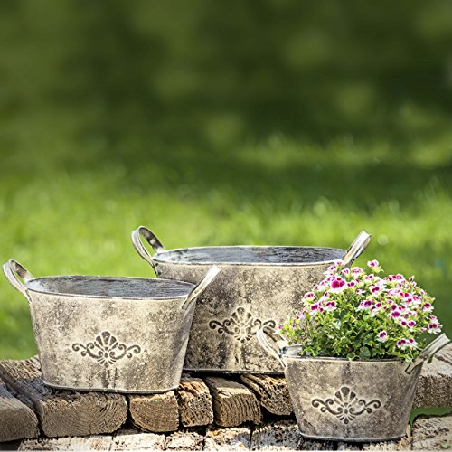 the-french-country-style-fleur-de-lis-jardiniere-rustic-cache-pot-urn-planter-galvanized-metal-lush-