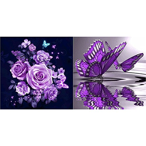 Hestya 2 Pieces Full Diamond Painting Rhinestone Painting Flowers Butterfly DIY Kit Supplies for Art Craft Home Decorations, 12 by 12 inch by Hestya