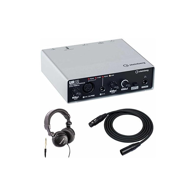 Steinberg UR12 USB Audio Interface with