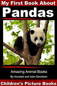 My First Book about Pandas - Children's Picture Books