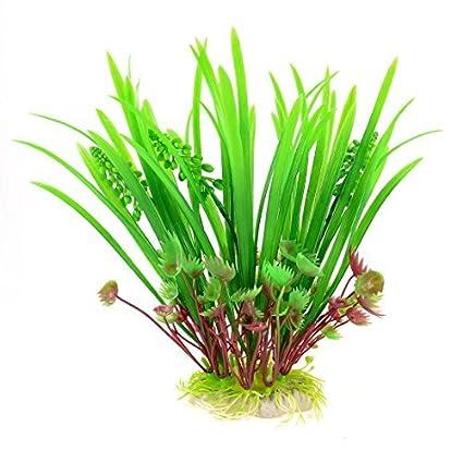 Amazon.com : eDealMax Planta de agua acuario de plástico, 3, 3 por 1, 8 pulgadas, Verde/Borgoña : Pet Supplies