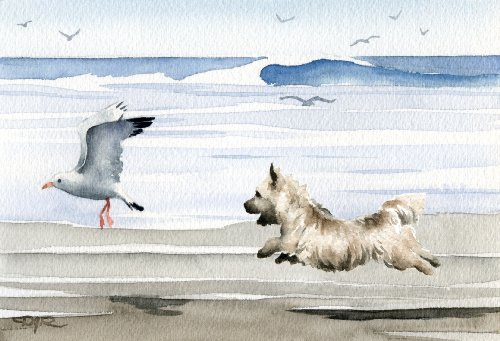 Art Cairn Dog Terrier (Cairn Terrier At the Beach Art Print by Watercolor Artist DJ Rogers)