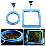Petacc Fish Feeder Ring Floating Fish Feeding Square Aquarium Feeding Station with Suction Cup, Set of 2, Blue