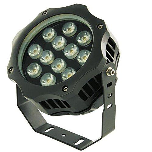 24W DC 24V Stage Flood light, IP66 6000K/RGB Fit Cinema, Theatre, Stadium, Music Court, Garden, Yard Stadium Court