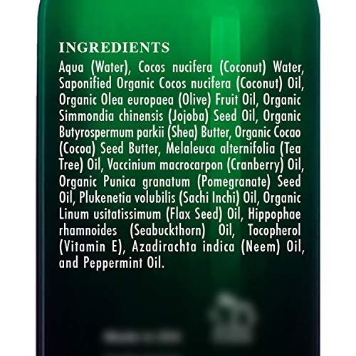 BOTANIC HEARTH Tea Tree Body Wash Helps Nail Fungus Athletes Foot Ringworms Jock Itch Acne Eczema amp Body Odor Soothes Itching amp Promotes Healthy Skin and Feet Naturally Scented 16 fl oz