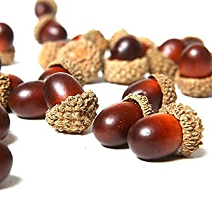 Lorigun 50 Pcs Artificial Acorns with Natural Acorn Cap Fake Acorn for Decoration Home House Kitchen Decor Christmas Decoration Fall Table Scatter Crafting 9
