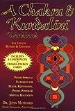 A Chakra & Kundalini Workbook: Psycho-Spiritual Techniques for Health, Rejuvenation, Psychic Powers and Spiritual Realization