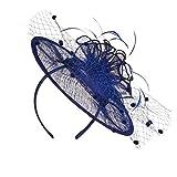 Q_TS Diademas Pelo Banda Turbantes Pluma sombrerería Malla Boda Material del Banquete señoras Elegantes Accesorios para el Cabello Azul