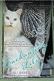 Enchanting Lily, Anjali Banerjee, 0425245306