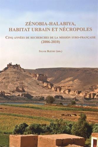 Zénobia-Halabiya, habitat urbain et nécropoles : Cinq années de recherches de la mission syro-française (2006-2010) (1Cédérom)