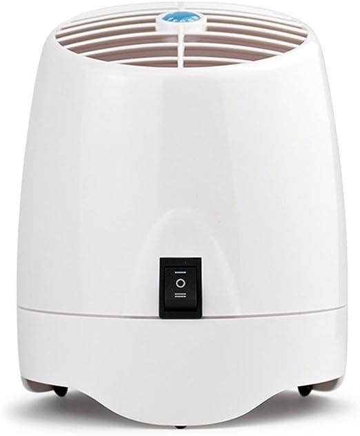 zheshen purificador de aire, filtro de ozono, Axila de heno Polen ...