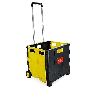 Carrito de la compra plegable de plástico - ligero carrito de libros para profesor - Caja de almacenamiento plegable con ruedas con asa de aluminio: ...