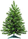 Ten Waterloo Pre-Lit Battery Operated with Timer 2 Foot High x 16 Inches Wide Artificial Christmas Balsam Pine Tree with 50 LED Lights, 75 Tips On Base