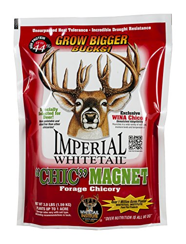 Whitetail Institute Men's Imperial Chic Magnet Food Plot Seed, 3 lb (Evolved Harvest Throw And Grow Extreme Reviews)