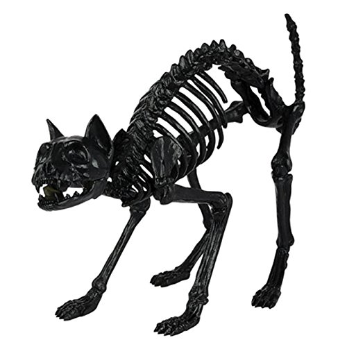 Crazy Bonez Skeleton Cat -