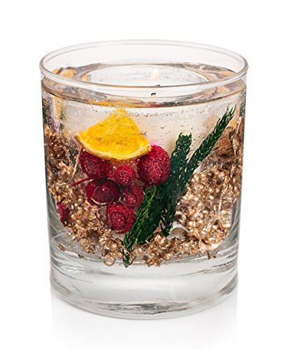 Botanicals Winter Spice Gel Tumbler Natural Wax Candle with real fruit & spice