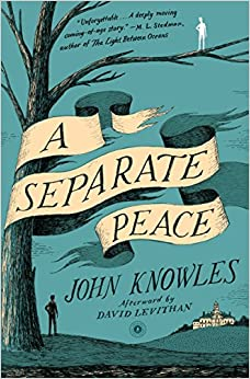 the theme of friendship in john knowles a separate peace 2012-9-12 a separate peace holding firmly to the trunk, i took a step toward him, and then my knees bent and i jounced the limb this quotation from the novel  a separate peace, written by john knowles points to the underlying theme man's.