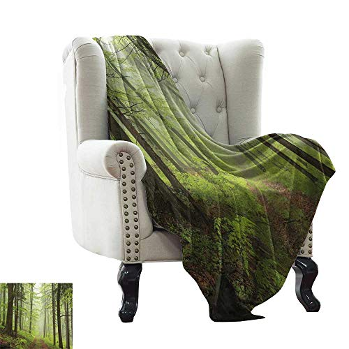- Cool Weighted Blanket Adult Outdoor,Trail Trough Foggy Alders Beeches Oaks Coniferous Grove Hiking Theme,Pale Green Pale Yellow Reversible Soft Fabric for Couch Sofa Easy Care 30