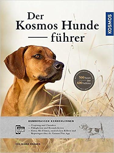 idea Kontaktanzeigen Büchlberg frauen und Männer words... super