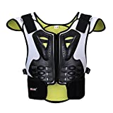 BARHAR Dirt Bike Body Chest Spine Protector Armor Vest Protective Gear for Dirtbike Bike Motocross Skiing Snowboarding (L)