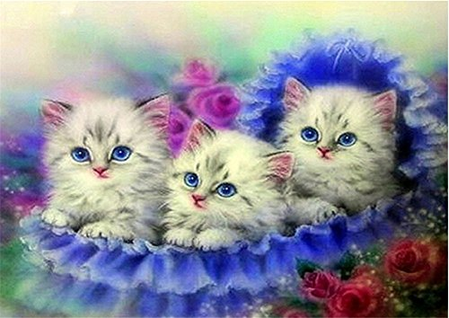 Cute Halloween Embroidery Designs (YEESAM ART New 5D Diamond Painting Kit - Cute Cats - DIY Crystals Diamond Rhinestone Painting Pasted Paint by Number Kits Cross Stitch Embroidery)