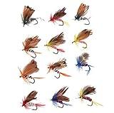 Best Salmon Flies - AGPtek® 48PCS Assorted Trout Flies Fishing Fly DRY Review