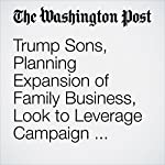 Trump Sons, Planning Expansion of Family Business, Look to Leverage Campaign Experience | Jonathan O'Connell,David A. Fahrenthold,Matea Gold